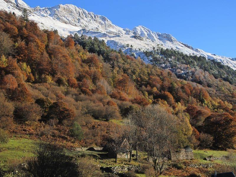 Pyrenees4