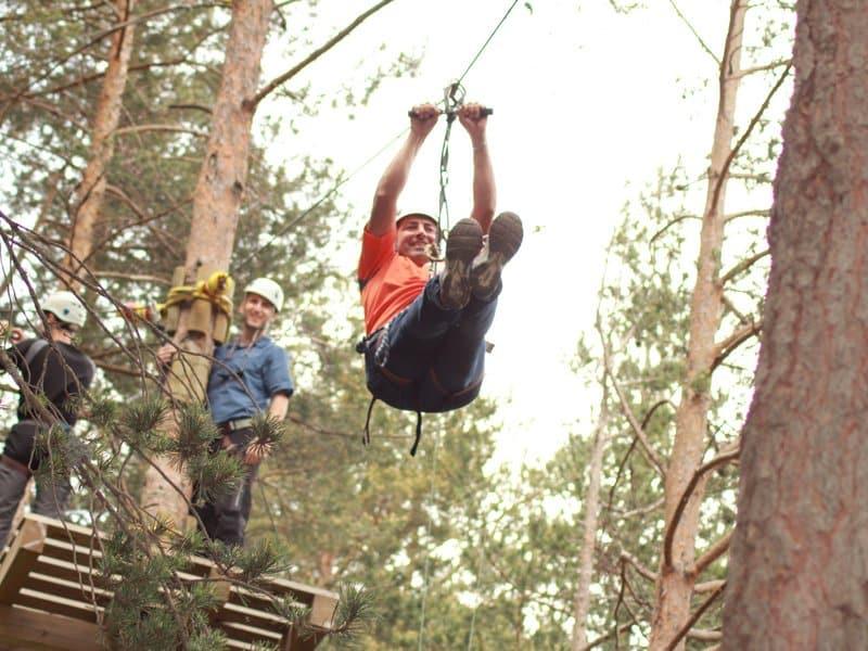 Treetop (5)